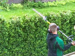 A student with epilepsy used hedge-cutters and other landscaping tools in a training program.