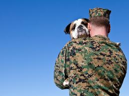 A counselor with PTSD needed to use a service dog at work to decrease his anxiety.